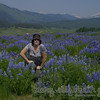 fields and fields of lupine in washington gulch-crested butte, colorado.  amazing.